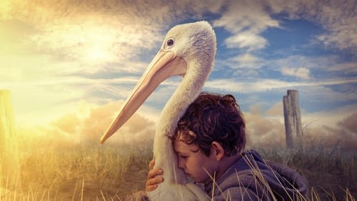 Storm Boy 2019 Watch Online Free Movie Full HD 4K